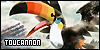 Pokemon: Toucannon